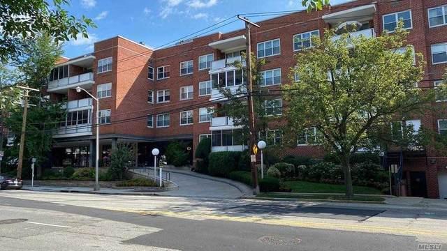 One Kensington Gate #107, Great Neck, NY 11021 (MLS #3241061) :: Nicole Burke, MBA   Charles Rutenberg Realty