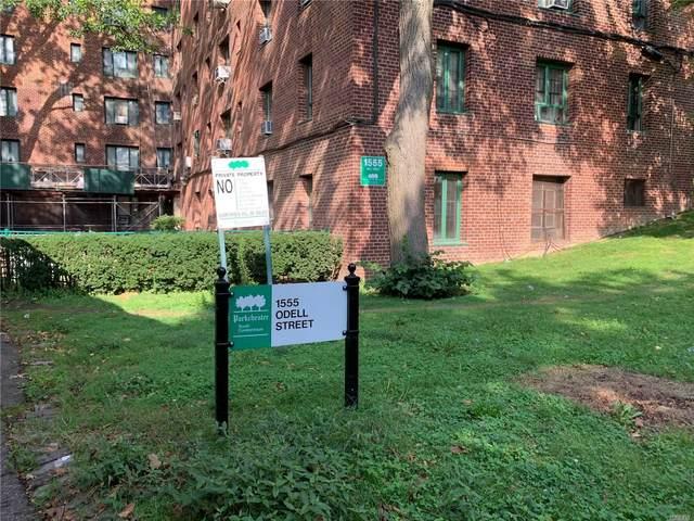1555 Odell Street 6H, Bronx, NY 10462 (MLS #3244037) :: Kevin Kalyan Realty, Inc.