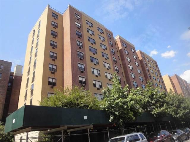 1259 Grant Ave 9A, Bronx, NY 10456 (MLS #3246163) :: McAteer & Will Estates | Keller Williams Real Estate