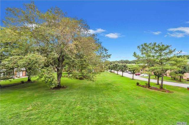 185 Artist Lake Dr #185, Middle Island, NY 11953 (MLS #3256036) :: Cronin & Company Real Estate