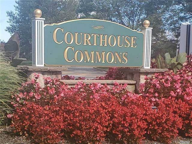 1723 Finch Lane, Central Islip, NY 11722 (MLS #3258341) :: Cronin & Company Real Estate