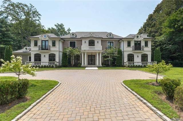 6 Steven Lane, Great Neck, NY 11024 (MLS #3260544) :: Nicole Burke, MBA   Charles Rutenberg Realty