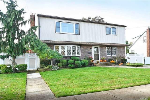 252 N Rutherford Avenue, Massapequa, NY 11758 (MLS #3262329) :: Signature Premier Properties