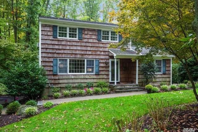 105 Cooper Court, Port Jefferson, NY 11777 (MLS #3263672) :: Signature Premier Properties
