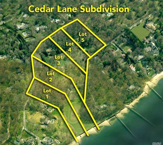 29 Cedar Lane, Sands Point, NY 11050 (MLS #3263795) :: Signature Premier Properties