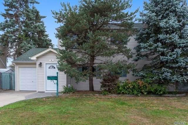55 Flamingo Road, Levittown, NY 11756 (MLS #3264730) :: Signature Premier Properties
