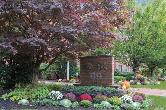 99 S Park Ave #223, Rockville Centre, NY 11570 (MLS #3264800) :: Kevin Kalyan Realty, Inc.