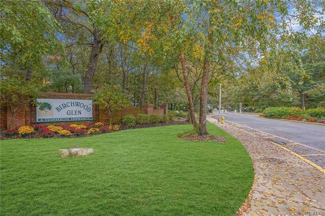 10 Glen Hollow Drive C13, Holtsville, NY 11742 (MLS #3265840) :: McAteer & Will Estates | Keller Williams Real Estate