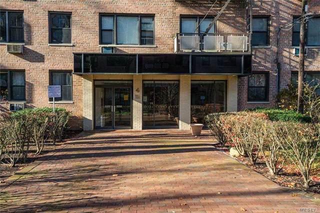 4 Birchwood Court 5N, Mineola, NY 11501 (MLS #3273413) :: Kevin Kalyan Realty, Inc.