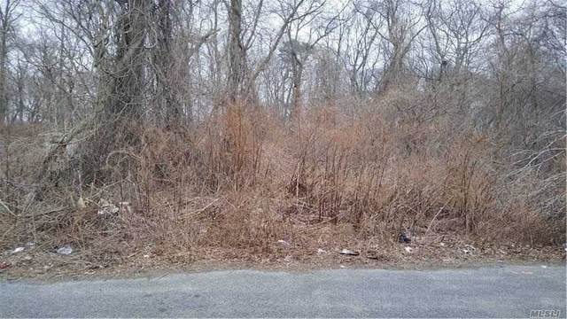 26 Cedar, Wyandanch, NY 11798 (MLS #3279580) :: Nicole Burke, MBA | Charles Rutenberg Realty
