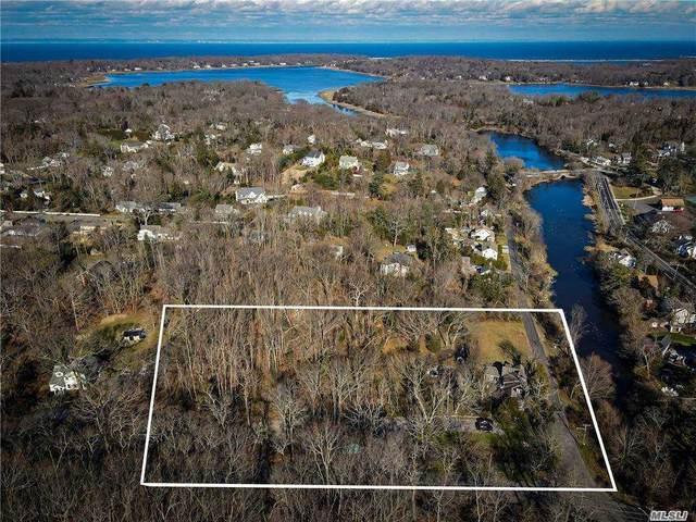 18 Lake St, Setauket, NY 11733 (MLS #3281955) :: Nicole Burke, MBA | Charles Rutenberg Realty