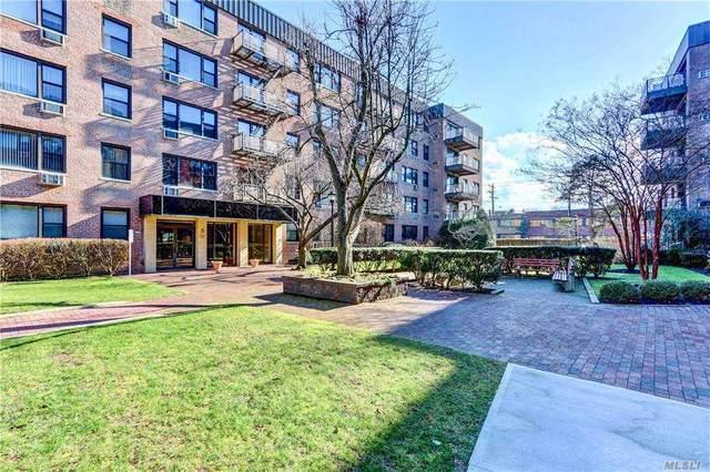 5 Birchwood Court 4-O, Mineola, NY 11501 (MLS #3282610) :: Nicole Burke, MBA   Charles Rutenberg Realty