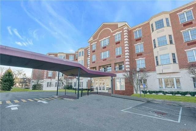 50 Merrick Avenue #220, East Meadow, NY 11554 (MLS #3285102) :: Signature Premier Properties