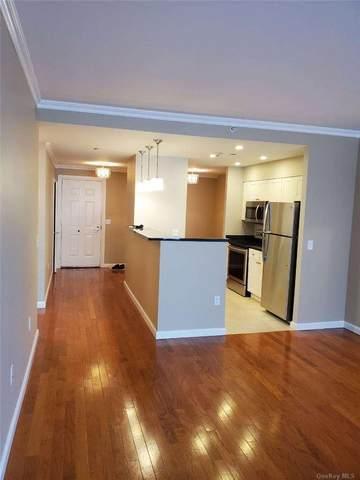 300 Mamaroneck Avenue #433, White Plains, NY 10605 (MLS #3285677) :: Signature Premier Properties