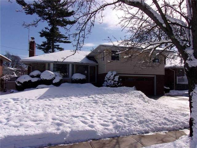 31 Edgewood Drive, New Hyde Park, NY 11040 (MLS #3290162) :: RE/MAX RoNIN