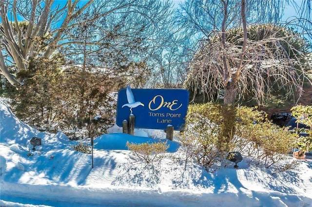 1 Toms Point Lane B1-1B, Port Washington, NY 11050 (MLS #3291777) :: RE/MAX RoNIN