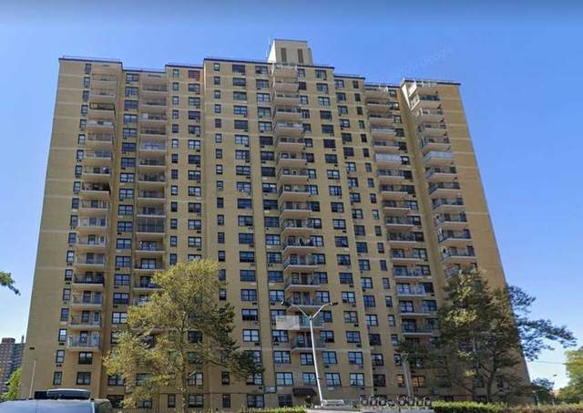 920 Metcalf Avenue 8D, Out Of Area Town, NY 10473 (MLS #3292162) :: Carollo Real Estate