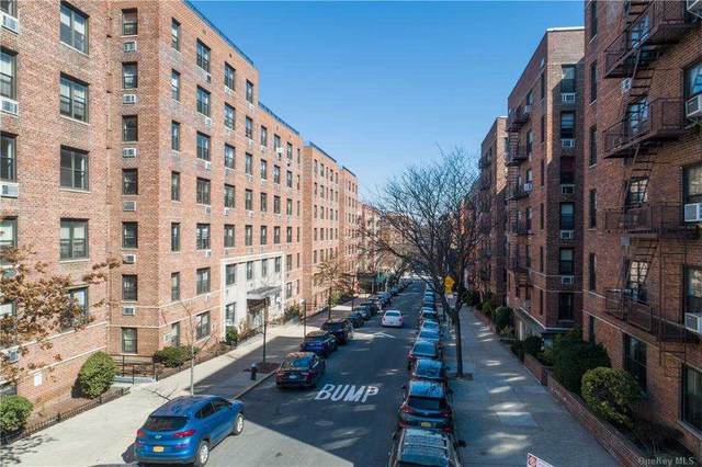 102-55 67th Drive 1F, Forest Hills, NY 11375 (MLS #3292186) :: McAteer & Will Estates | Keller Williams Real Estate