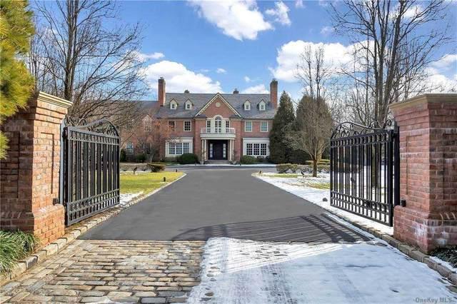 35 Applegreen Drive, Old Westbury, NY 11568 (MLS #3293623) :: Howard Hanna   Rand Realty