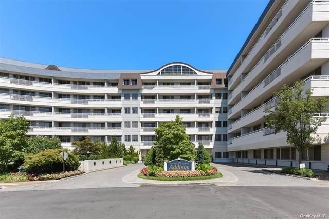 100 Harbor View Drive #119, Port Washington, NY 11050 (MLS #3299032) :: Barbara Carter Team