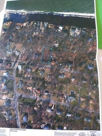 Hallock Lane, Rocky Point, NY 11778 (MLS #3302263) :: Kendall Group Real Estate | Keller Williams