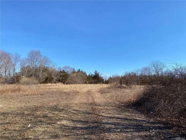 22 Tuthills Lane, Jamesport, NY 11947 (MLS #3302462) :: Mark Boyland Real Estate Team