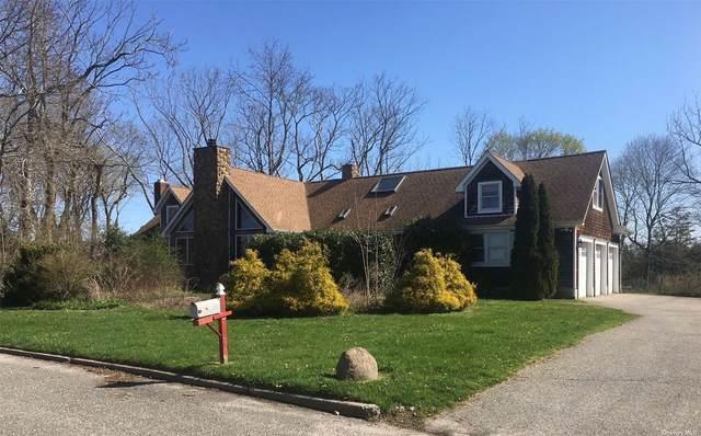 110 Colonial Drive, Aquebogue, NY 11931 (MLS #3303718) :: Signature Premier Properties