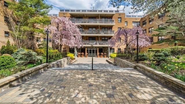 25 Park Place 1P, Great Neck, NY 11021 (MLS #3303918) :: Howard Hanna | Rand Realty