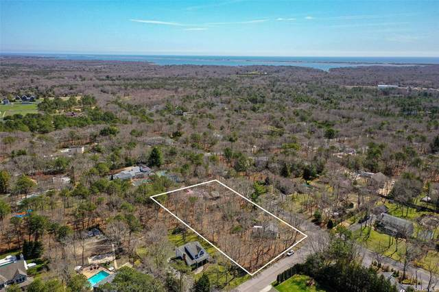 9 Deerland Drive, E. Quogue, NY 11942 (MLS #3304558) :: Frank Schiavone with William Raveis Real Estate