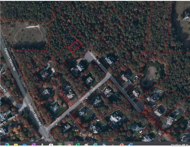 Eastportmanor Road, Eastport, NY 11941 (MLS #3305133) :: Signature Premier Properties