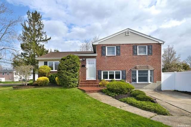 319 Maryland Avenue, Massapequa Park, NY 11762 (MLS #3306075) :: Signature Premier Properties