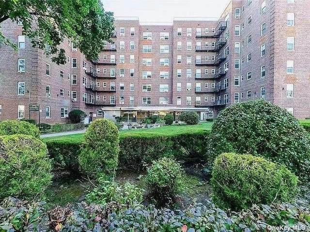 84-50 169 Street #510, Jamaica, NY 11432 (MLS #3308814) :: Carollo Real Estate