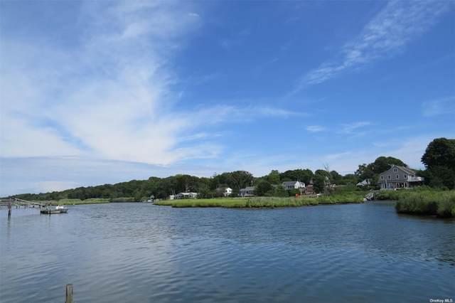 11 Fiddler Crab Trail, Westhampton, NY 11977 (MLS #3309078) :: Carollo Real Estate