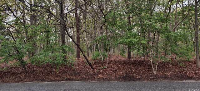 11 Norwalk Ave, Medford, NY 11763 (MLS #3309888) :: Signature Premier Properties