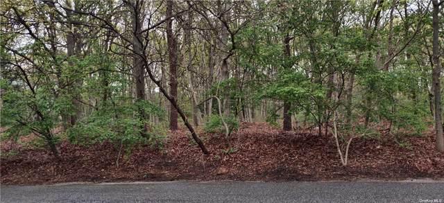 7 Norwalk Ave, Medford, NY 11763 (MLS #3309890) :: Signature Premier Properties