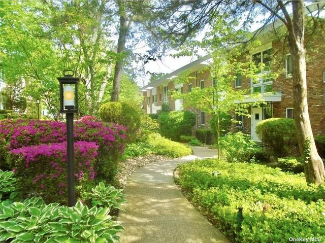200 Lexington Avenue 1E, Oyster Bay, NY 11771 (MLS #3310329) :: Carollo Real Estate
