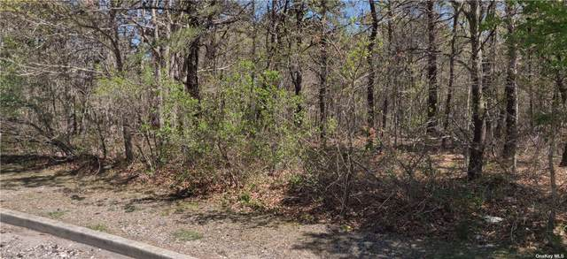 Lot 1 Brookwood Ln, E. Patchogue, NY 11772 (MLS #3310647) :: Corcoran Baer & McIntosh