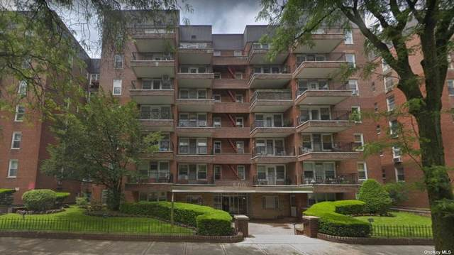 800 Ocean Parkway 6-C, Midwood, NY 11230 (MLS #3310919) :: Kendall Group Real Estate | Keller Williams