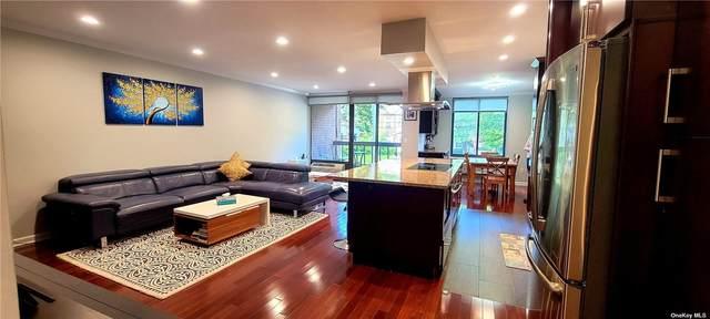 20 Gilchrest Road 1B, Great Neck, NY 11021 (MLS #3312130) :: Carollo Real Estate