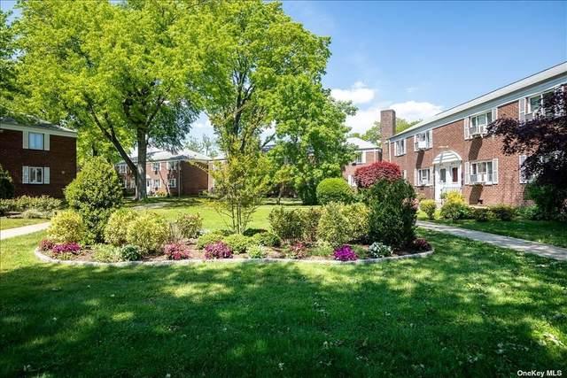 229-11 87th Avenue #2, Bellerose Manor, NY 11427 (MLS #3313159) :: Laurie Savino Realtor