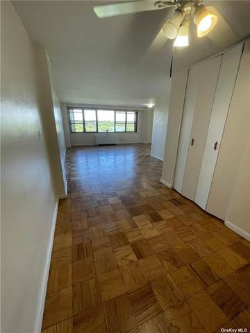 6120 Grand Central Parkway B910, Forest Hills, NY 11375 (MLS #3317271) :: RE/MAX RoNIN