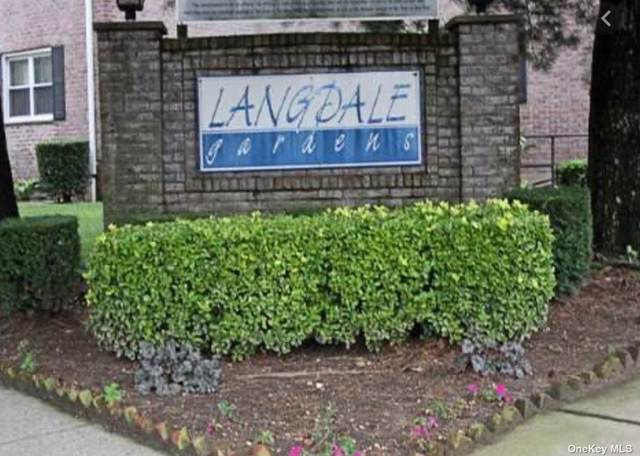 81-09 Langdale Street Lower, New Hyde Park, NY 11040 (MLS #3319437) :: Nicole Burke, MBA | Charles Rutenberg Realty