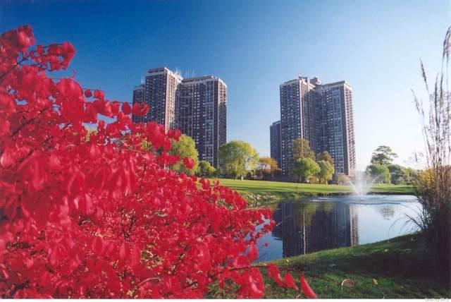 27110 Grand Central Parkway 24Z, Floral Park, NY 11005 (MLS #3320041) :: Carollo Real Estate