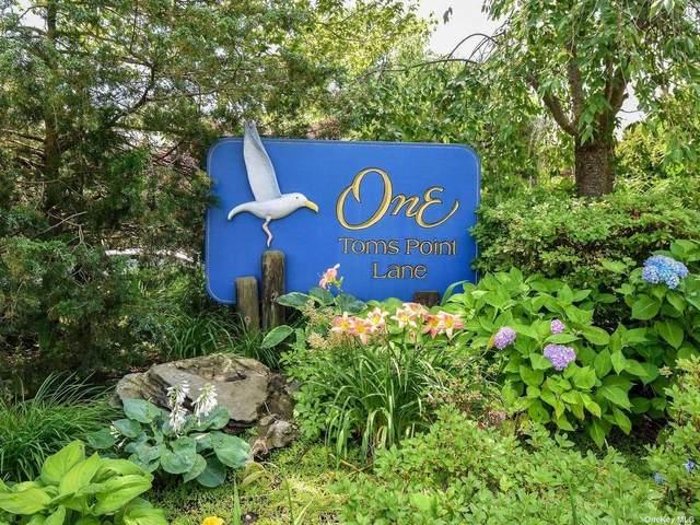 1 Toms Point Lane B8-17H, Port Washington, NY 11050 (MLS #3320494) :: Howard Hanna | Rand Realty