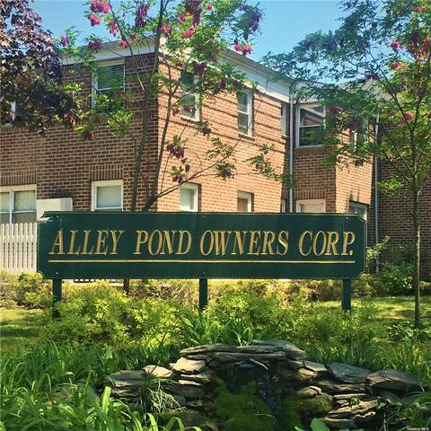 22461 Kingsbury Avenue B, Oakland Gardens, NY 11364 (MLS #3322502) :: Shalini Schetty Team