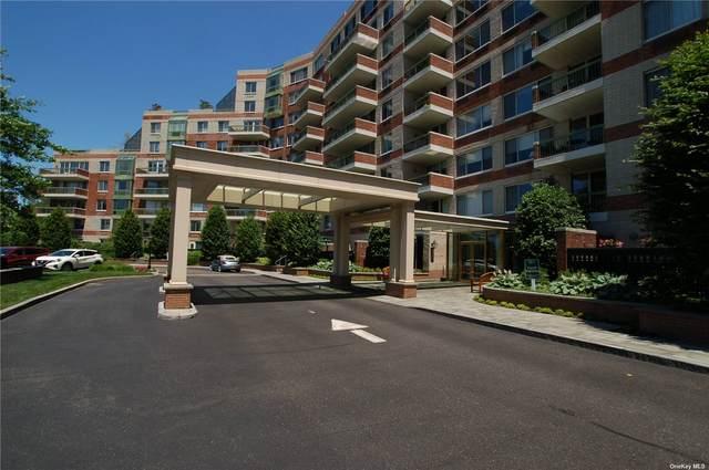 111 Cherry Valley Avenue 315W, Garden City, NY 11530 (MLS #3322579) :: Carollo Real Estate