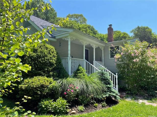 10 Cedar Valley Lane, Huntington, NY 11743 (MLS #3322727) :: Carollo Real Estate