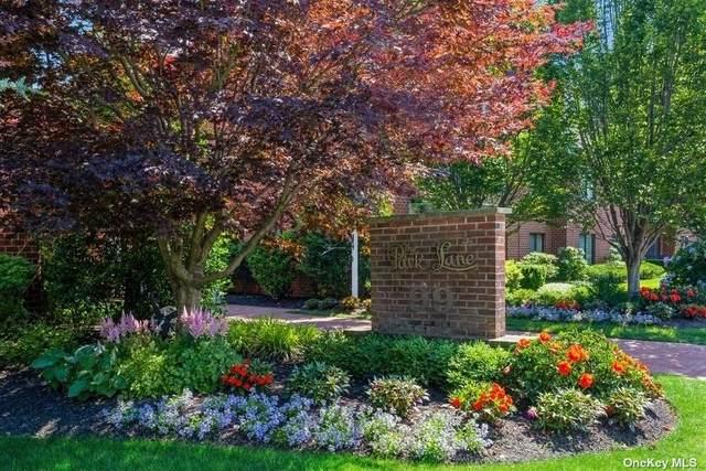 99 S Park Avenue #321, Rockville Centre, NY 11570 (MLS #3326369) :: Goldstar Premier Properties