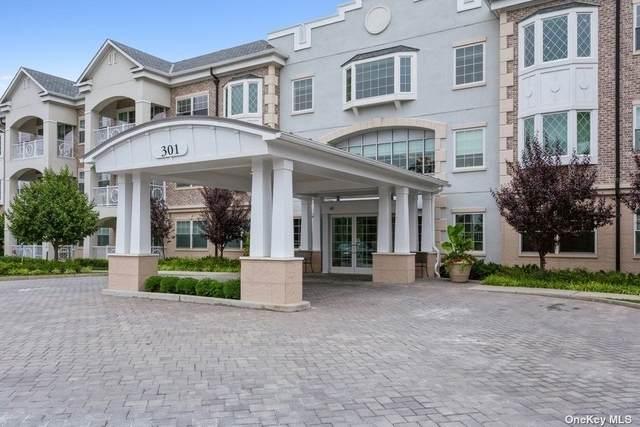 301 Franklin Avenue #309, Garden City, NY 11530 (MLS #3330085) :: Carollo Real Estate