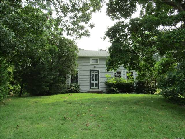 12 William Street, Hampton Bays, NY 11946 (MLS #3331401) :: McAteer & Will Estates | Keller Williams Real Estate